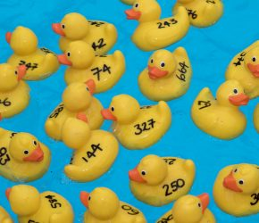 Hotels raise £3590 with giant 'net a duck' party