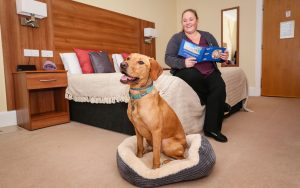 Treacle helps Bournemouth hotel attract the 'Hound Pound'