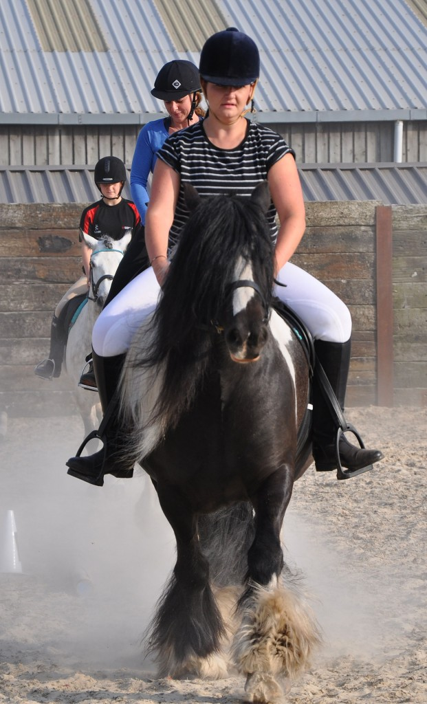 Parley Equestrian Centre's lessons on 'dressage etiquette' are proving popular.