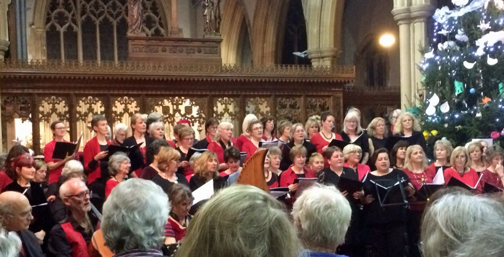 Poole-based community choir Luminos staged their annual Christmas concert at St Aldhelm's Church, Branksome, raising more than £700 for nominated charity WaterAid UK