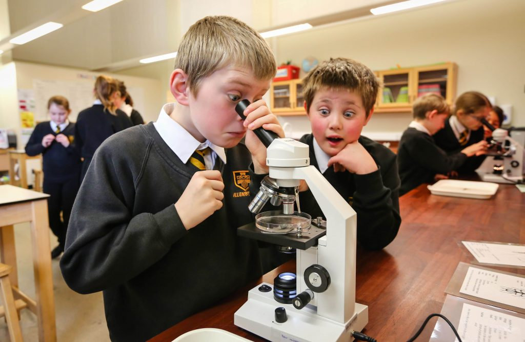 Pupils at Allenbourn Middle School study tiny creatures through microscopes as part of Science Week.