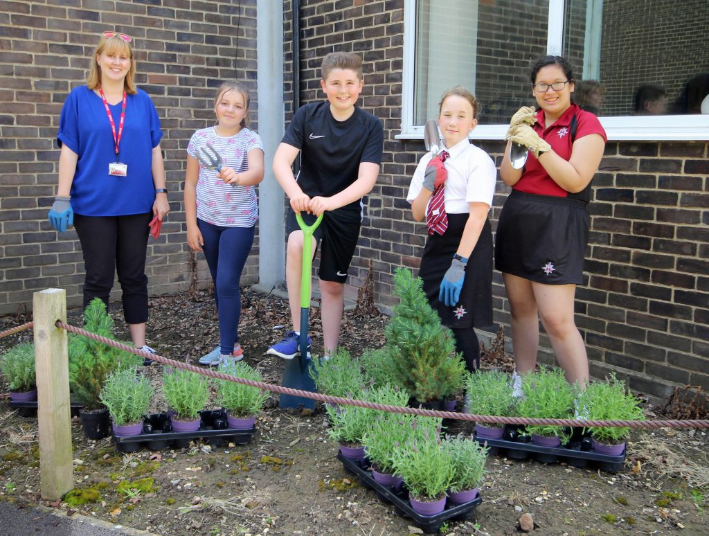 Planting the seeds of success. The Arnewood School's Gardening Club have created a new garden for the school, which is being entered in this year's Britain in Bloom contest.