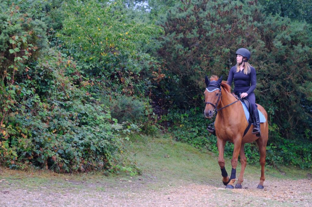 EQUINE ADVICE: Ellen Shipton is an expert in equine law at Ellis Jones Solicitors.